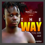 The way you are by Nelson MJ